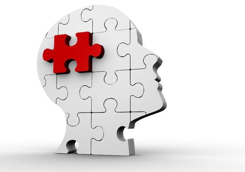Cerveau-Troubles-developpement