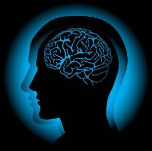 Cerveau-tda-tdah