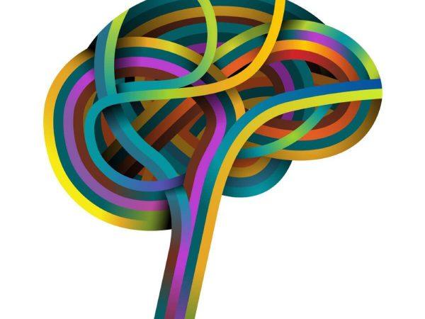 Anatomie des émotions chez tdah et troubles du comportement